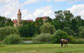 Radzevil palace in Nesvij in Belarus. — Stock Photo
