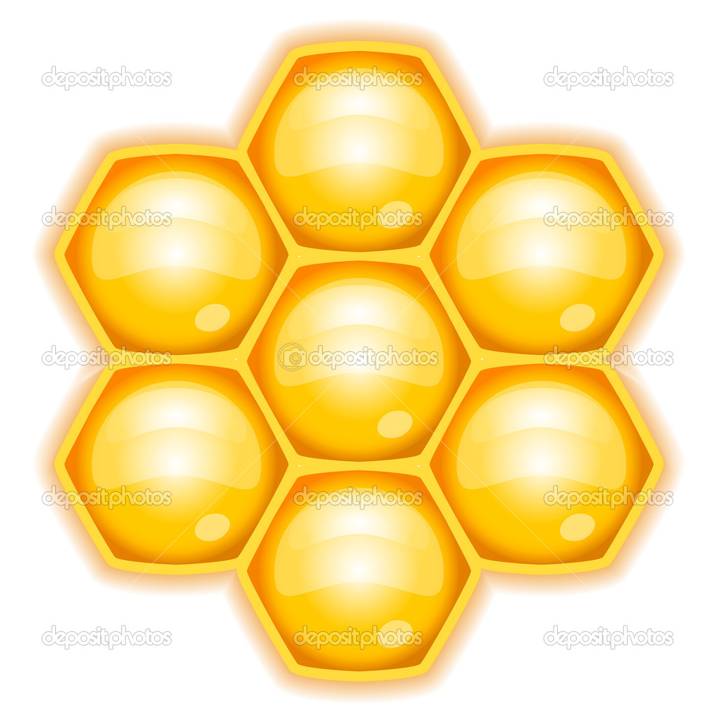 Vector illustration of honeycomb — Stock Vector #11923508