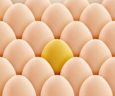 Golden egg — Stock Photo