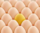 Golden egg — Stock Photo