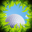Golf ball hole - Stock Photo