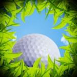 hoyo de la bola de golf — Foto de Stock