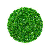 Green ball — Stock Photo