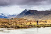 Fly fishing in a river — Stockfoto