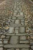 Design in Cobbled Road — Stock Photo