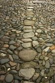 Cobbles in the road — Stock Photo