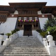 ENTRANCE STAIRS OF PUNAKHDZONG. BHUTAN. — Stock Photo #10901088