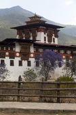 Punakha Dzong in Spring with purple Jacaranda trees (Bhutan) — Stock Photo
