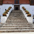ENTRANCE WITH STAIRS - RINPUN DZONG IN PARO - BHUTAN. — Foto Stock #10949459