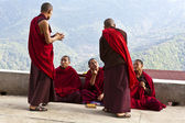 MONKS DISCUSSING IN NALANDA BHUDDIST COLLEGE - PUNAKHA - BHUTAN — Stock Photo
