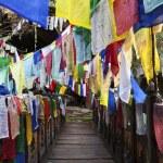 Постер, плакат: COLOURFUL PRAYER FLAGS AND A WOODEN BRIDGE IN BHUTAN
