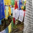 COLOURFUL PRAYER FLAGS IN BHUTAN — Stock Photo