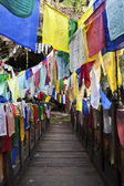 COLOURFUL PRAYER FLAGS AND A WOODEN BRIDGE IN BHUTAN — Stock Photo