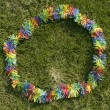 Lei on Grass — Stock Photo