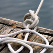 Stock Photo: Knotted Rope Tied To Dock