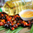 Palm Oil fruits — Stock Photo #11334297