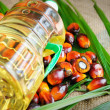 Palm Oil fruits — Stock Photo #11997595