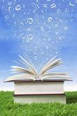 Wisdom books outdoor — Stock Photo