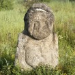Stone idol in the steppe — Stock Photo