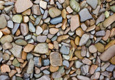 Colourful pebbles on the beach — Stock Photo