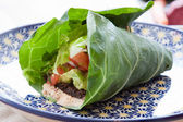 Vegan taco wrap — Stockfoto