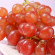 Italian red table grape — 图库照片