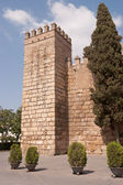 Royal Alcazar of Sevilla — Stock Photo
