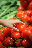 Tomatoes at the market — Stockfoto