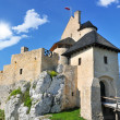 Medieval castle — Stock Photo #11167836