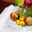 Thanksgiving Bible — Stock Photo