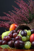 Fruit cornucopia — Stock Photo
