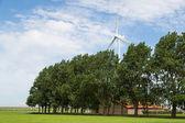 Dutch farmland with farmhouse and windturbine — Stock Photo