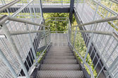 Steel staircase of an observation tower in the forest — Stock Photo
