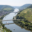 Landscape with the river Moselle near Neef in Germany — Stock Photo