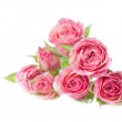 Bouquet of beautiful roses on white background — Stock Photo