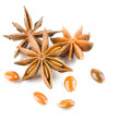 Anise star on white background - Stock Photo