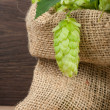 Hop in a burlap bag on wooden background - Stock Photo
