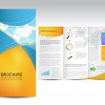 Vector Brochure Layout Design — Stock Vector