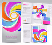 Tri-fold brochure — Stock Vector