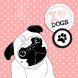 I love Pugs! - Stock Vector