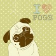 I love Pugs! — Stock Vector