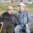 Royalty-Free Stock Photo: Happy elderly couple at park