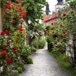 Постер, плакат: Alley of Roses