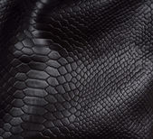 Reptile skin background — Stock Photo