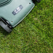 Lawn background — Stock Photo #11707780
