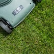 Stockfoto: Lawn background