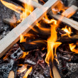 Campfire burning — Stock Photo