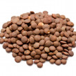 Stock Photo: Brown lentils