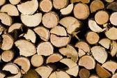 Woodpile — Foto Stock
