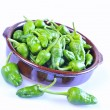 Typical green peppers of Padron in Galicia. — Stock Photo